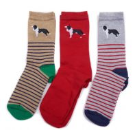Barbour Collie  Sock Giftbox - LAC0135GY11